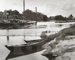 Oderlandschaft bei Maltsch, 1942, Fotoabzug