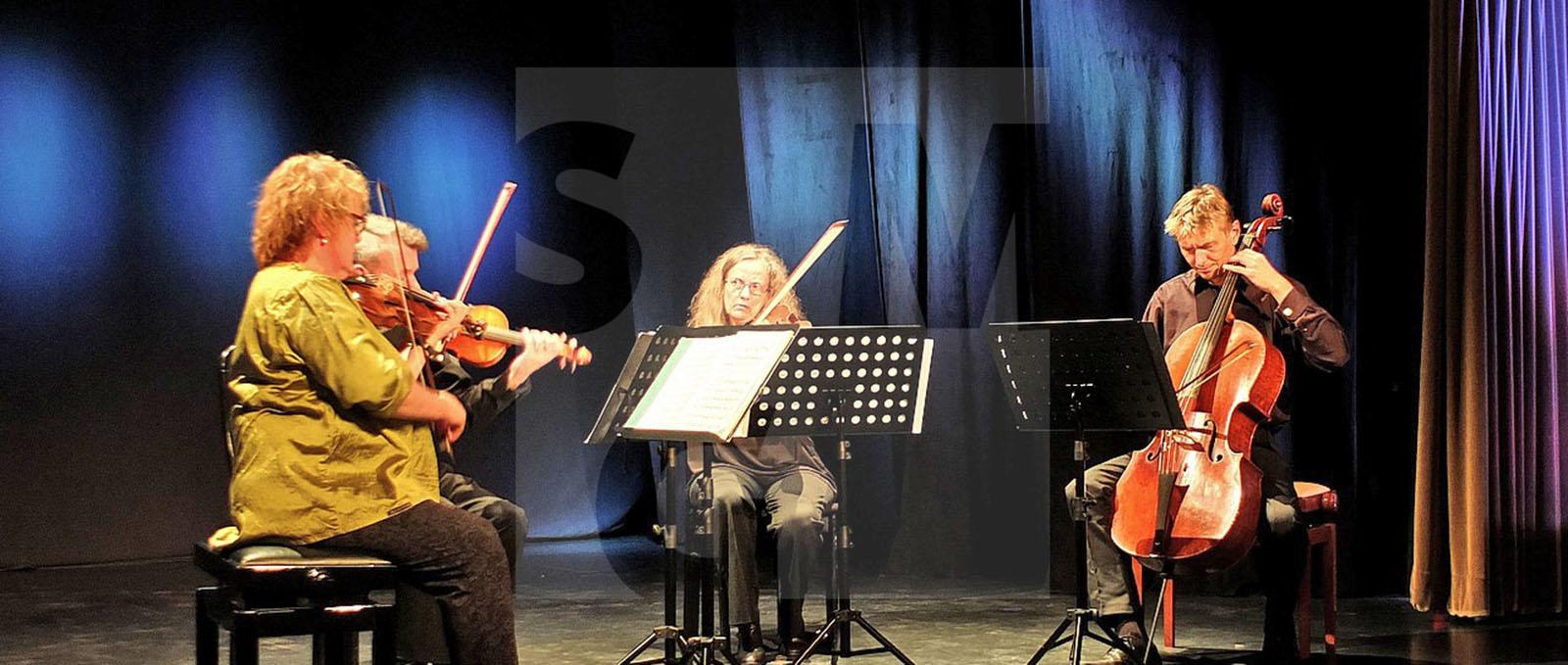 Hauptbild Konzert Wiener Klassik
