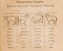 Bildwörterbuch für Zwangsarbeiter