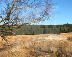 Groß-Iser, ein verschwunderer Ort im Isergebirge, Fot. ABormann (Oktober 2018) (1)